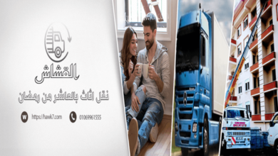 شركات نقل اثاث بالعاشر من رمضان